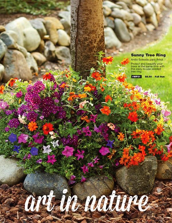 Finest spring flower bulbs mightylinksfo